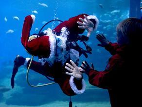 Papá Noel acuático atrae a cientos de visitantes a acuario de España