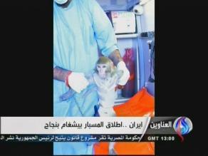 Irán asegura que mandó un segundo mono al espacio y regresó con vida