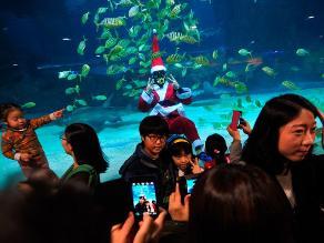 Navidad submarina en el Acuario Coex en Seúl