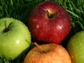 La manzana y sus beneficios para la salud