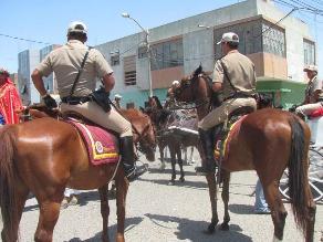Lambayeque: Darán de baja a tres caballos de la Policía Montada