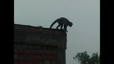 Alarma en Independencia por mono que escapó durante fiestas