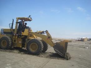 Chiclayo: entierran restos de delfines muertos en playa de Pimentel