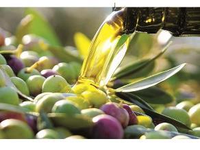 Aceite de oliva reduce en 70% los problemas circulatorios