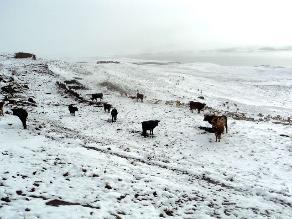 Puno: encuentran a quinta víctima tras avalancha de hielo
