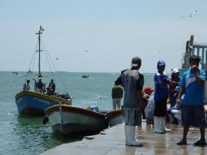 Arequipa: pescadores se beneficiarán con mar recuperado por Perú