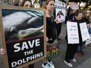 Defienden a los delfines y protestan en Embajada de Japón