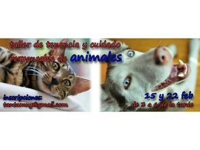 Interesante taller para amantes de los animales