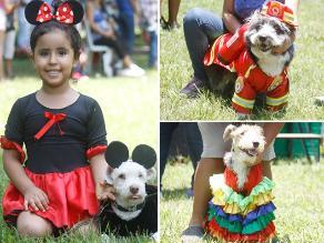 Mascotas: Mira cómo celebraron el fin de carnavales