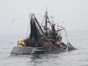 Se podrá pescar 200 mil toneladas de pota en nueva zona marítima