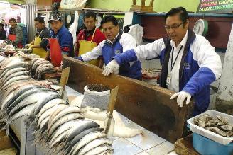 Huancayo: decomisan 4 kilos de pescado en descomposición