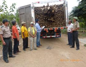 Trujillo: Intervienen ilegal carga de eucalipto trasladada desde Otuzco