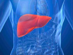 Alertan de las proporciones epidémicas de la hepatitis C