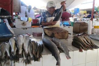 Chiclayo: precio del pescado empezó a subir por Semana Santa