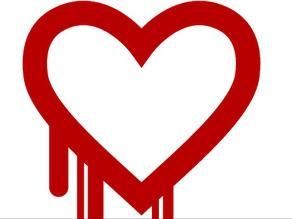 Creador de Heartbleed niega que fallo sea pedido de servicios secretos