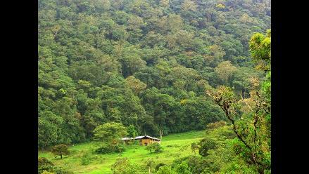 Oxapampa: aparece suboficial perdido cuatro días en la selva