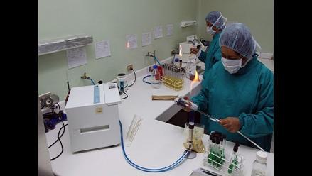 Curan cáncer de sangre con virus de sarampión modificado