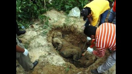 México: Encuentran nueve cuerpos en fosas clandestinas