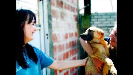 ¡Mucho olfato!: Consejos para adoptar un perro