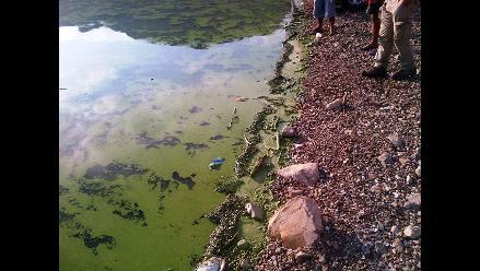 Cajamarca: preocupación por agua verdosa en represa Gallito Ciego