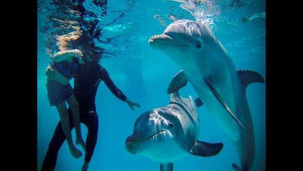 Cuba: Terapia con delfines ayuda a niños con síndrome de Down y autismo