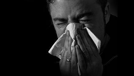 ¿Resfriado? Plantas medicinales para combatirlo