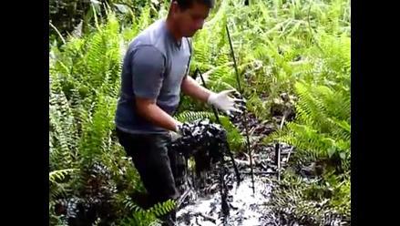 Estudio: Chevron causó contaminación generalizada en selva ecuatoriana
