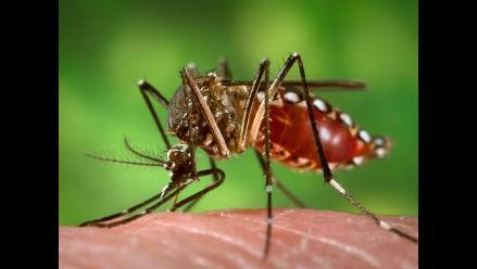 Aumenta a doce los casos de fiebre chikunguña en Venezuela