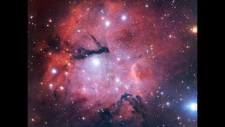 ESO presenta una imagen de un