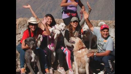 LIKE PETS | ¡Al aire libre!: Excursión canina