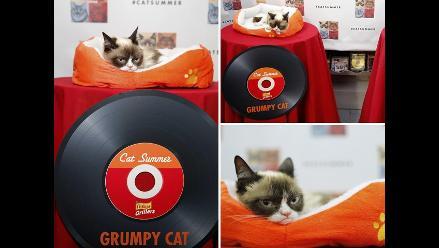Grumpy Cat: celebran lanzamiento de videoclip
