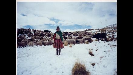 Andahuaylas: se acentúa el frío en zonas altoandinas