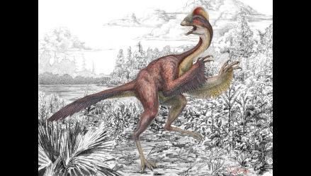 Estudio afirma que dinosaurios se extinguieron debido a la mala suerte