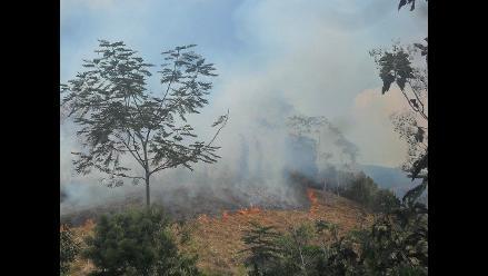 Puno: controlan incendio forestal en Lampa