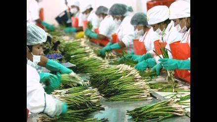 Unión Europea exige a exportadores a cumplir con etiquetado