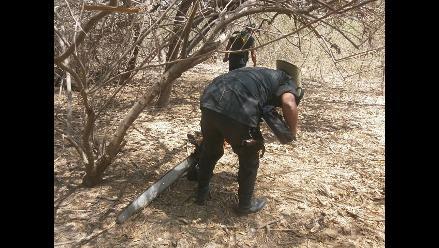 Lambayeque: pobladores denuncian tala indiscriminada de bosques