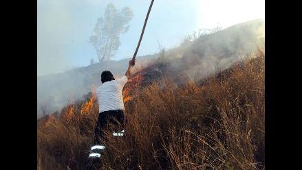 Cusco: incendio forestal consumió más de 20 hectáreas de flora y fauna