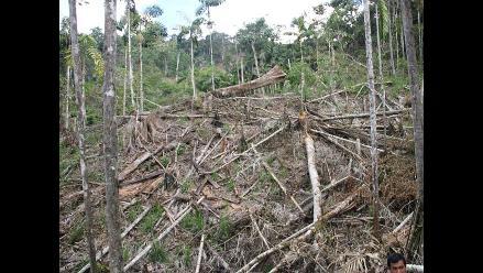 Reglamento del MEM desprotegería el ambiente, advierten