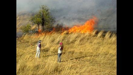 Cusco: se registraron más de 30 incendios forestales en lo que va del mes