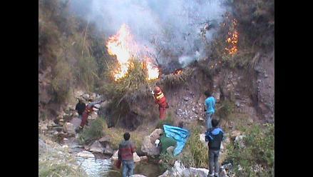 Amazonas: incendio forestal arrasó con más de 500 hectáreas en Chachapoyas