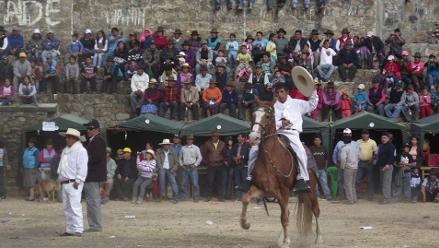 Áncash: los caballos de paso peruano en Huasta