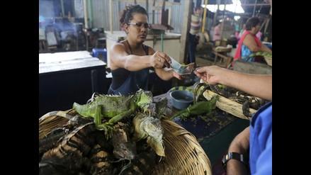 Gobierno de Nicaragua recomendó a sus ciudadanos consumir iguanas ante sequía