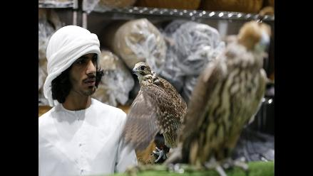 Lo mejor de la 17va feria ecuestre y de cacería en Abu Dhabi