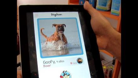 LIKE PETS | Dog Juan, una aplicación para tu perro