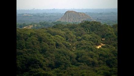 Realizarán reconocimiento de zonas adyacentes al Bosque de Pómac