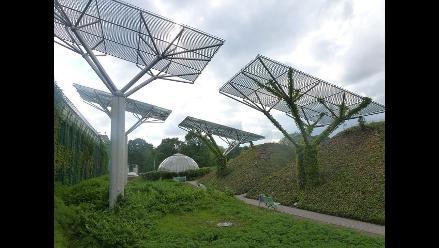 Energía solar sería la primera fuente de generación eléctrica en 2050