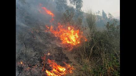 Abancay: incendio forestal consume más de 100 hectáreas