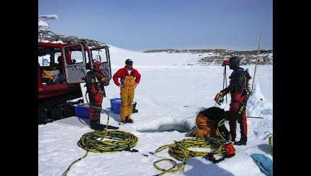 Estudian impacto de la acidez del agua en la vida submarina antártica