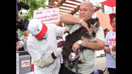 Campaña de vacunación antirrábica canina será el 25 y 26 de octubre