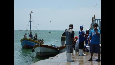 Inician sanciones a embarcaciones por capturar anchoveta no autorizada